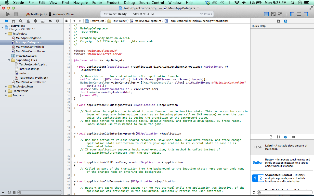 xcode add code to launch view controller with nib in app delegate